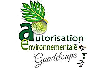 autorisation environnementale